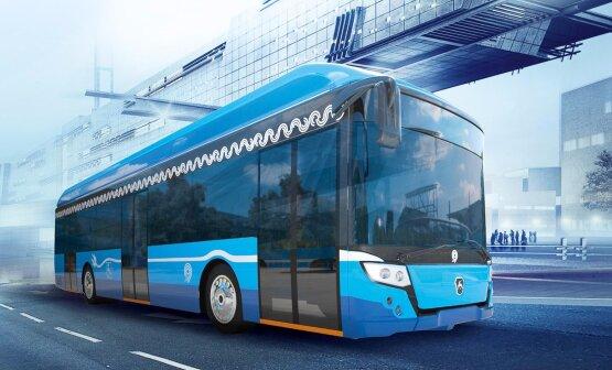 Перевозки по Украине. Виды транспорта и преимущества автобусов